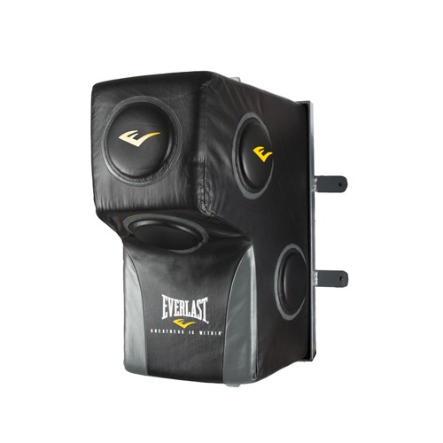 Everlast Wall Mounted Upper Cut Heavy Bag For Training
