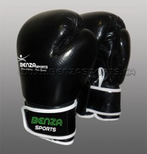 Training & Sparring Glove
