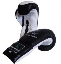 Coach Boxing Glove